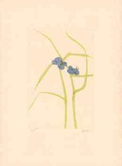 Purple Flowers- Baskin-Limited Edition