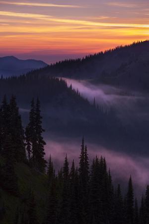 https://imgc.artprintimages.com/img/print/purple-fog-sunset-olympic-national-park-washington-usa_u-l-pn762s0.jpg?p=0