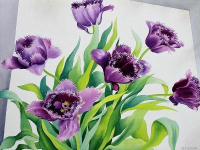 Purple Fringe Tulips-Christopher Ryland-Giclee Print