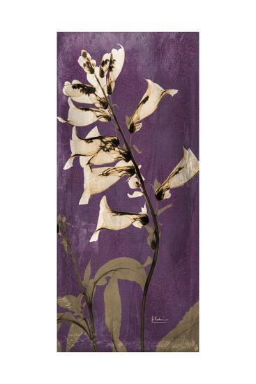 Purple Opus Foxglove-Albert Koetsier-Premium Giclee Print
