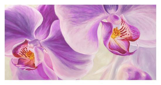 Purple Orchids-Cynthia Ann-Giclee Print
