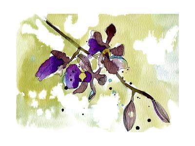 https://imgc.artprintimages.com/img/print/purple-orchids_u-l-q12tozu0.jpg?p=0