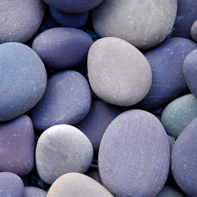 Purple Pebbles--Photographic Print