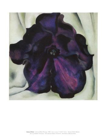 https://imgc.artprintimages.com/img/print/purple-petunia_u-l-f1pqbt0.jpg?p=0