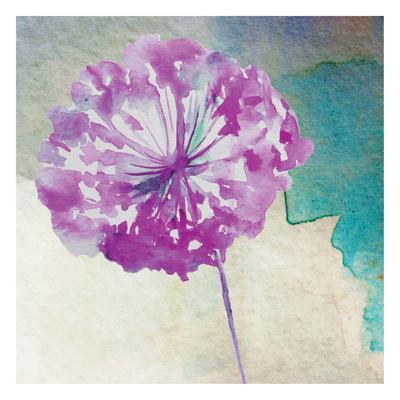 https://imgc.artprintimages.com/img/print/purple-poof_u-l-f93sld0.jpg?p=0