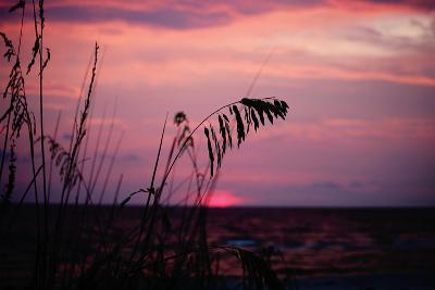 Purple Sky Sunset over the Ocean-pattigeorge-Photographic Print