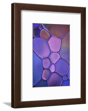 Purple Stained Glass-Cora Niele-Framed Photographic Print