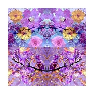 Purple Sunrise-Alaya Gadeh-Art Print