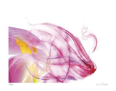 Purple Tulip Abstract No 128-Shams Rasheed-Giclee Print