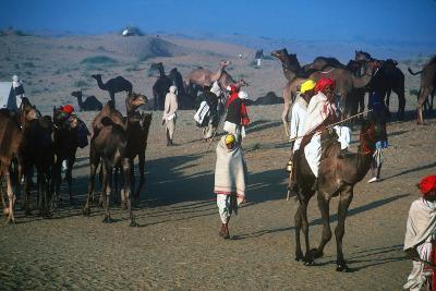 Pushkar Festival, Pushkar, Rajasthan, India--Photographic Print