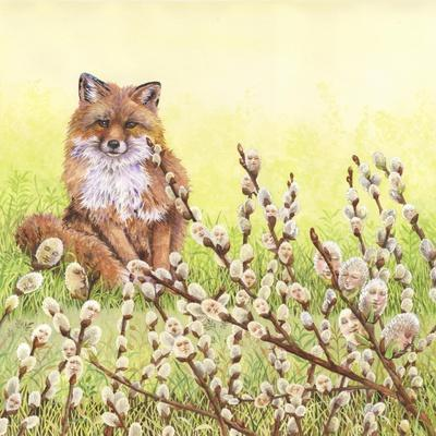https://imgc.artprintimages.com/img/print/pussywillows-fox_u-l-q12uzva0.jpg?p=0
