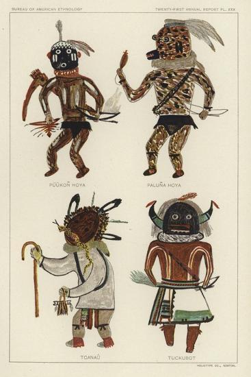 Puukon Hoya, Paluna Hoya, Tcanau, Tuckubot--Giclee Print