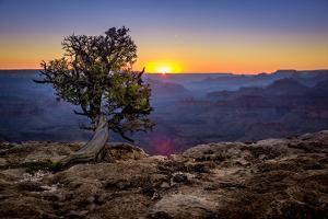 Grand Canyon National Park Arizona by pxhidalgo