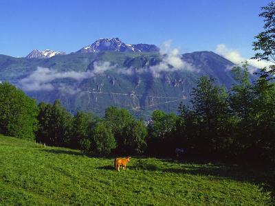 Pyrenees France-Charles Bowman-Photographic Print