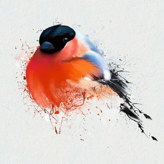 Pyrrhula  A Vivid Illustration of Bullfinch, close Up, with Elements of the  Sketch and Spray Paint, Art Print by Pacrovka | Art com