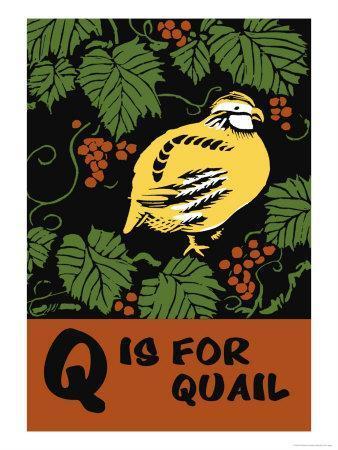 https://imgc.artprintimages.com/img/print/q-is-for-quail_u-l-p299vj0.jpg?p=0