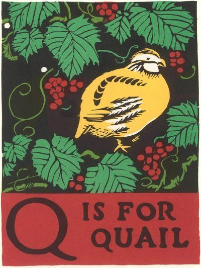 Q is for Quail--Art Print
