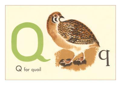 Q is for Quail--Art Print