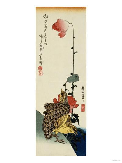 Quail and Wild Poppies-Kishi Chikudo-Giclee Print