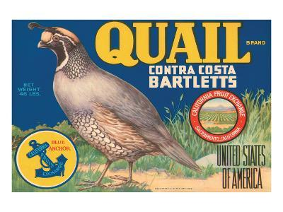 Quail Brand Contra Costa Bartletts--Art Print