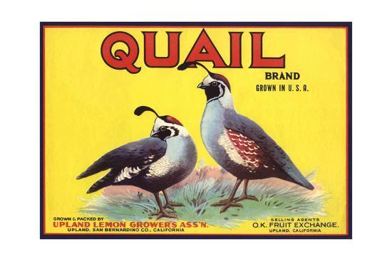 Quail Brand - Upland, California - Citrus Crate Label-Lantern Press-Art Print