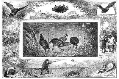 Quail Hunting, 1880--Giclee Print