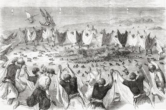 Quail Hunting on the Coast of Syria. from 'L'Univers Illustré', Published 1866--Giclee Print