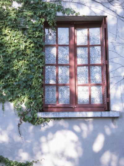 Quaint Windows in Vine-Covered House--Photographic Print