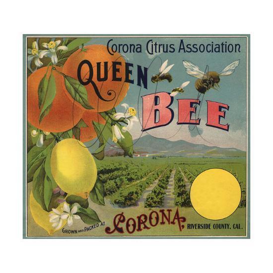 Queen Bee Brand - Corona, California - Citrus Crate Label-Lantern Press-Premium Giclee Print