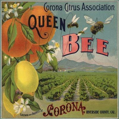 https://imgc.artprintimages.com/img/print/queen-bee-brand-corona-california-citrus-crate-label_u-l-q1grhub0.jpg?p=0