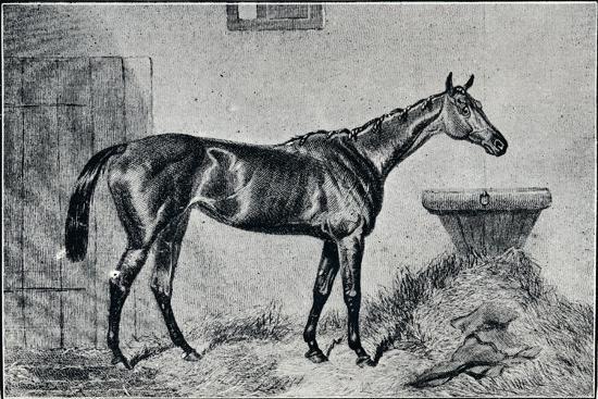 'Queen Bertha', 19th century, (1911)-Unknown-Giclee Print