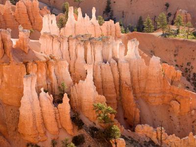 Queens Garden, Bryce Canyon National Park, Utah, USA-Jamie & Judy Wild-Photographic Print