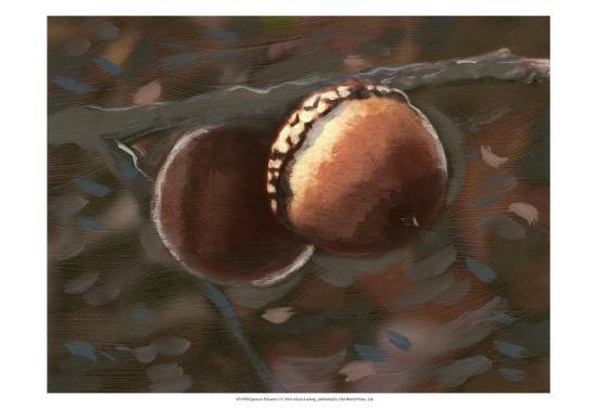 Quercus Palustris I-Alicia Ludwig-Art Print