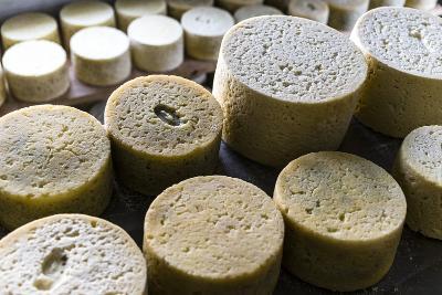 Queserýa Rogelio Lopez Campo, Cabrales Cheese Maker, at Sotres, Asturias, Spain-Carlos Sanchez Pereyra-Photographic Print