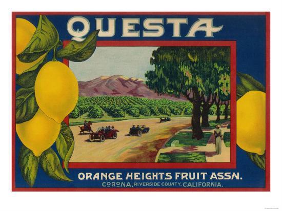 Questa Lemon Label - Corona, CA-Lantern Press-Art Print