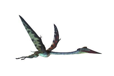 Quetzalcoatlus Predatory Pterosaur--Art Print