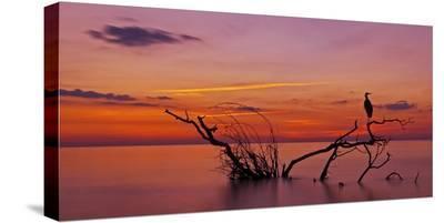 Quiet Evening--Stretched Canvas Print