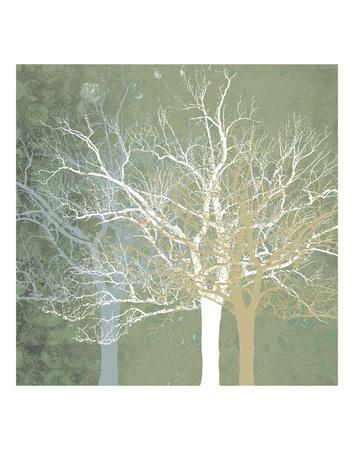 https://imgc.artprintimages.com/img/print/quiet-forest_u-l-f8ci8g0.jpg?p=0