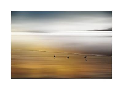 https://imgc.artprintimages.com/img/print/quiet-invitation_u-l-f5mg310.jpg?artPerspective=n