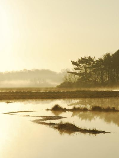 Quiet Moments Overlooking the Marsh at Dawn, Scarborough,Maine-Nance Trueworthy-Photographic Print