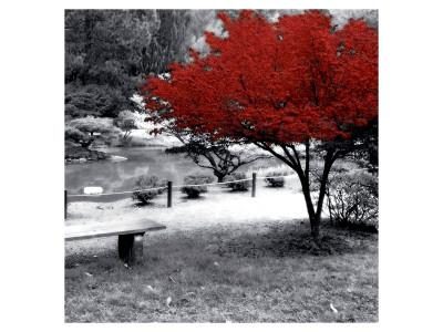 https://imgc.artprintimages.com/img/print/quiet-moments_u-l-f4srjc0.jpg?p=0
