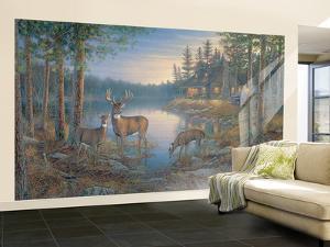 Quiet Places Huge Mural Art Print Poster Large