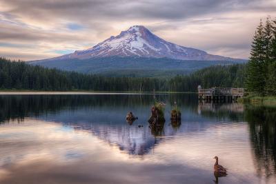 Quiet Time at Trillium Lake, Mount Hood Wilderness, Oregon-Vincent James-Photographic Print
