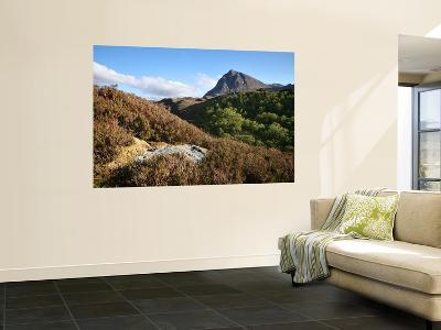 Quinag Mountain in Remote Highlands of Sutherland-Feargus Cooney-Wall Mural