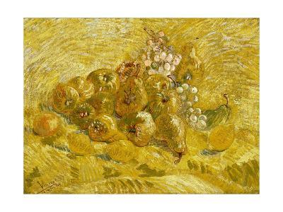 Quinces, Lemons, Pears and Grapes-Vincent van Gogh-Giclee Print