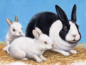 Rabbits by R. B. Davis