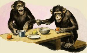 Z For Zoo, Chimpanzee's Tea-Party by R. B. Davis