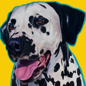 Yellow Dalmation by R Berghaus