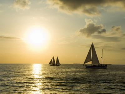 Sailboats at Sunset, Key West, Florida, USA by R H Productions