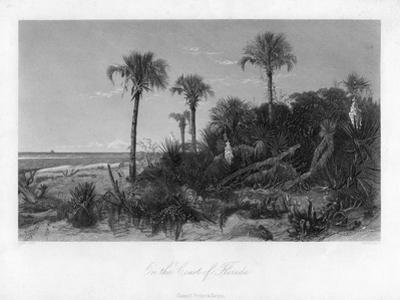 On the Coast of Florida by R Hinshelwood